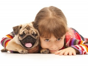 Little girl and Pug-dog