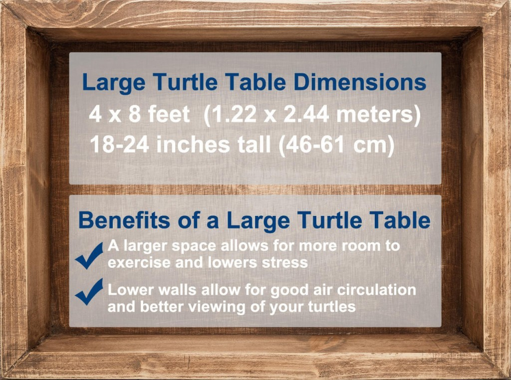 Benefits of a turtle table
