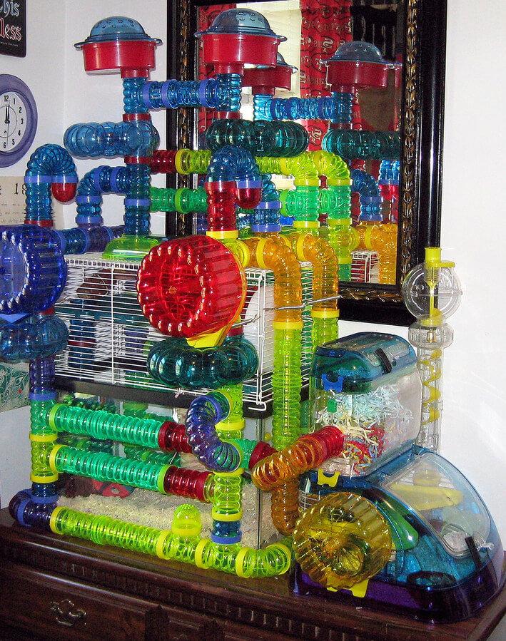 Extreme modular plastic hamster habitat