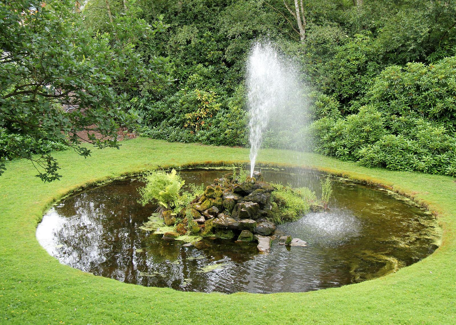Сад своими руками вода фото