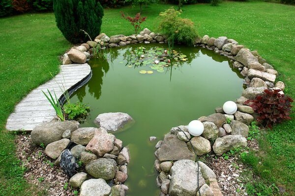 How to take care of a goldfish in a pond for Outdoor fish pond care