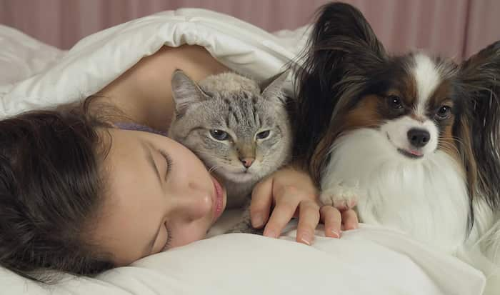 Sleeping in bed with pets
