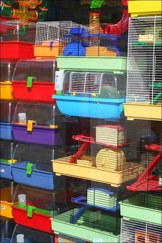 options for hamster cages