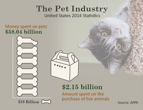 pet industry stats united states